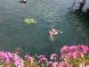 Хевиз озеро